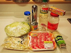 hitorilifenet-salt-butter-garlic-nabe-middle-01